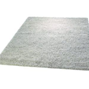 Lavaggio tappeto